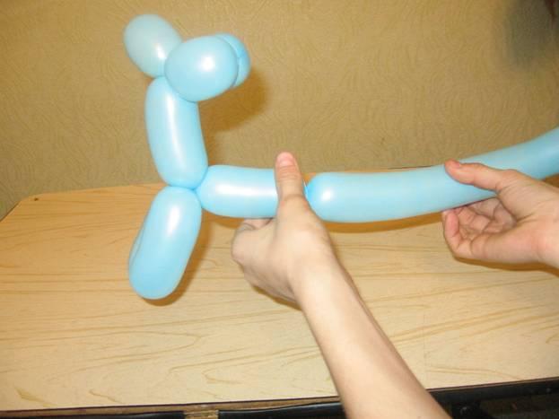 Как сделать собачку из воздушного шарика. Шаг 8